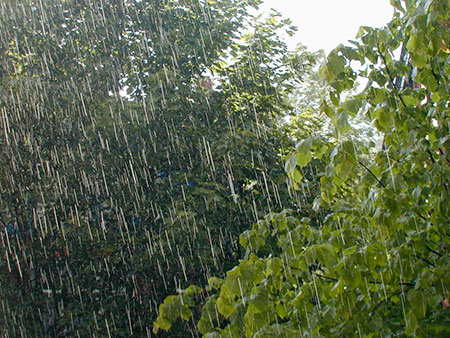 lluvia-8
