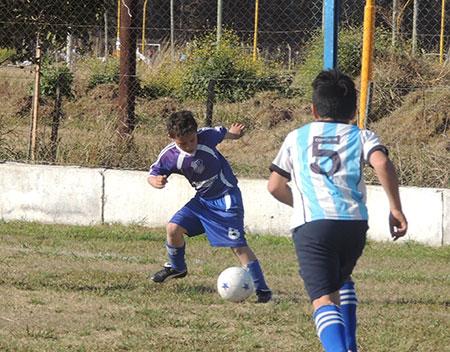 centro13