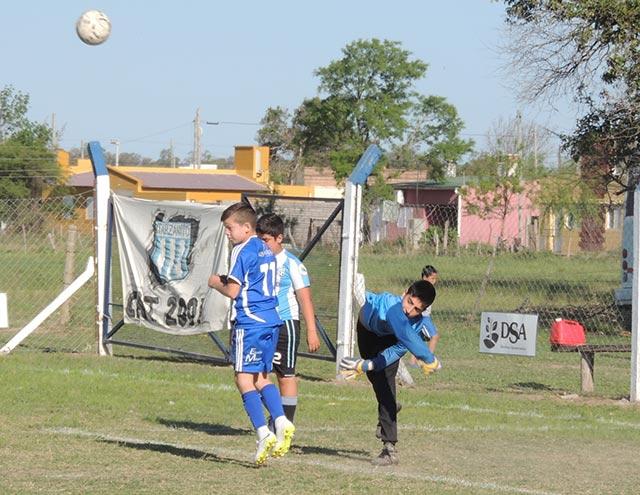 faisan13