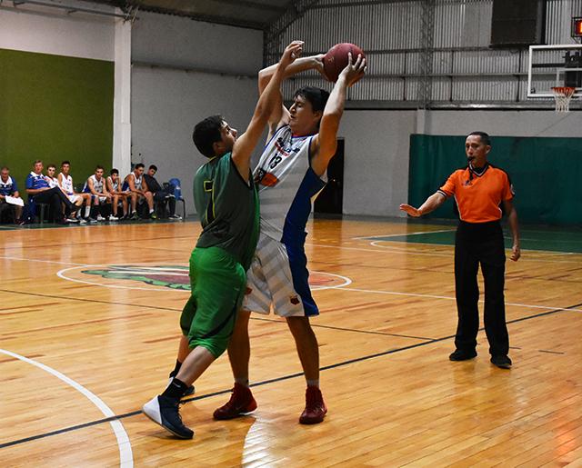 basquetprimera13